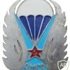 French 5th Parachute Huntsmen Regiment badge, unofficial