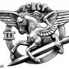 French 2nd Parachute Huntsmen Regiment, 3rd Battalion pocket badge