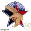 12e Bataillon de choc img26215