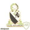 124th CAVALRY REGIMENT Техаs