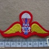 Thailand Army Basic paratrooper wings