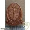 Tanzania Army cap badge, type 1 img26952