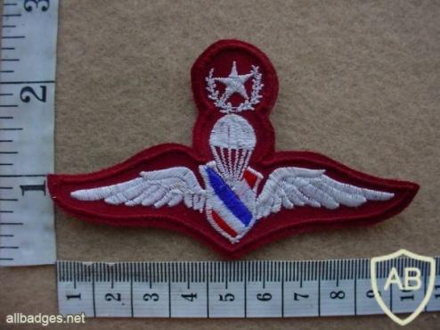 Thailand Border Patrol Police Master paratrooper wings img26948