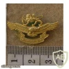 Rhodesia Air Force Women's cap badge