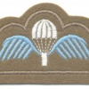 BELGIUM Parachute wings, full color on brown