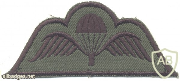 BELGIUM Parachute wings, subdued img27454