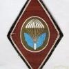 Czechoslovak Army recon battalion patch img27469