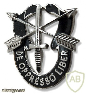 SPECIAL FORCES - general badge img28037