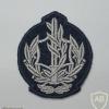 """דרגת רב סמל מתקדם (רס""""מ) ישנה - חיל האוויר"""