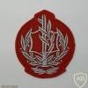 """דרגת רב סמל מתקדם (רס""""מ) ישנה - חיל האוויר, לנגדי משמעת"""