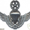 SOUTH KOREA Army Master Parachute qualification wings