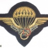 FRANCE Army Parachute Instructor qualification badge, bullion