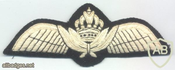 JORDAN Royal Jordanian Air Force Pilot wings, 1970s, cloth img29168