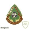 196th Field Artillery Brigade