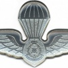 MALAYSIA Police Parachute wings