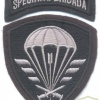 CZECH REPUBLIC 6th Special Brigade sleeve patch, field version, 1995-2001
