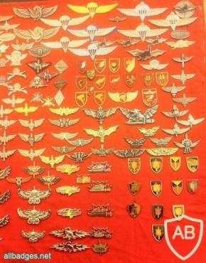 חטיבת הצנחנים, חטיבת כפיר וחיל ההנדסה הקרבית img30441