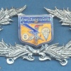 THAILAND Army Special Warfare Center breast badge