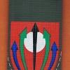 חטיבת הצנחנים (מיל) 551 חיצי האש  img31598