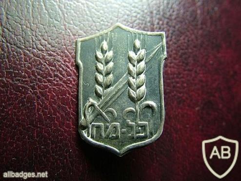 """סמל פלמ""""ח נפתלי בזם img32175"""