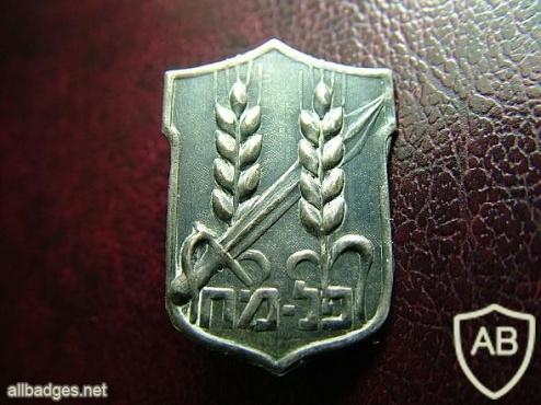 """סמל פלמ""""ח נפתלי בזם img32176"""