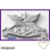 לוחם ספינת שלדג ( בעבר- סמל בסיס חיל הים עין גדי ) img34911