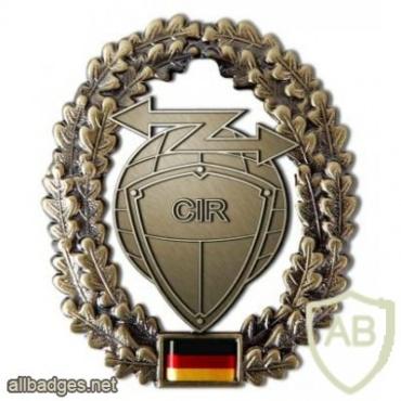 Cyber Warfare cap badge img35678