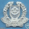 SINGAPORE Police Force collar badge