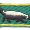 SOUTH WEST AFRICA - SWATF - Tracker proficiency cloth badge, green