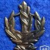 דרגת צווארון רס''מ (רב סמל מתקדם) - חילות השדה (גירסה 2)