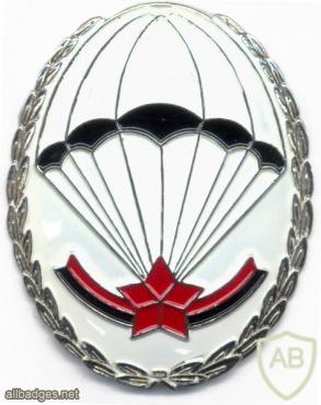 ALBANIA Army Parachute qualification badge img36867