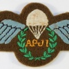 Assistant Parachute Jump Instructor qualification wings, cloth