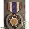 Border Patrol Purple Cross