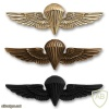 Navy and Marine Corps Parachutist Wings