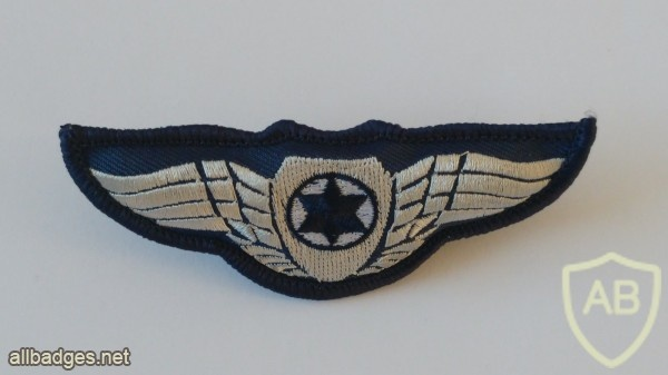 כנפי טייס img39154