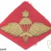 ETHIOPIA Army Senior Parachute wings badge, bullion on red