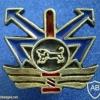 גדוד שגב - פיקוד מרכז