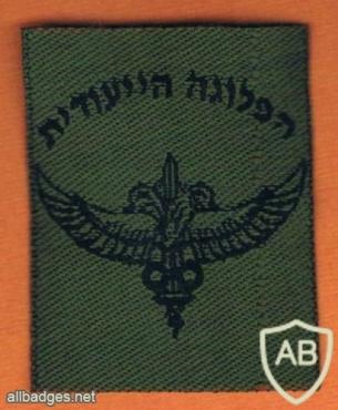 יחידת זיקית- 636 img40245