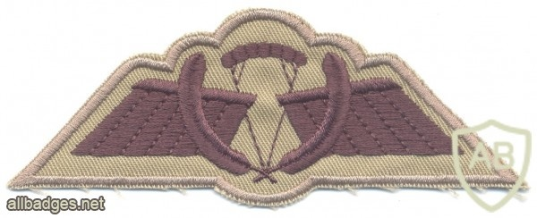NETHERLANDS Army desert Freefall Parachutist operational wings img40412