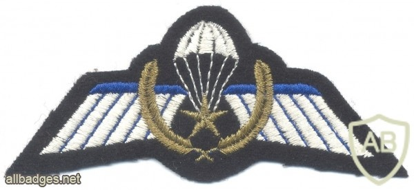 NETHERLANDS Army DT 2000 Parachutist A Brevet combat jump wings, full color img40425