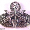 Special Forces Parachutist Wings Master