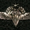 כנפי צניחה- 50 צניחות