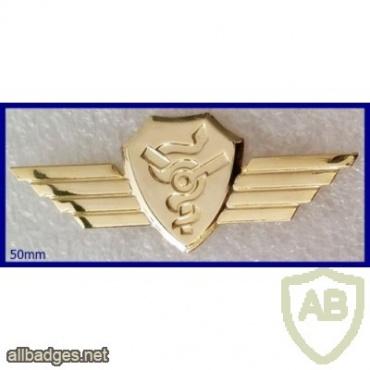 כנפי חובש מוטס- מוזהב img40978