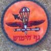 גף חימוש - כנף- 28 נבטים