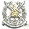 ZIMBABWE National Army cap badge
