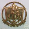 שוחר חיל הים