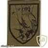 French Intelligence Brigade arm patch img42683