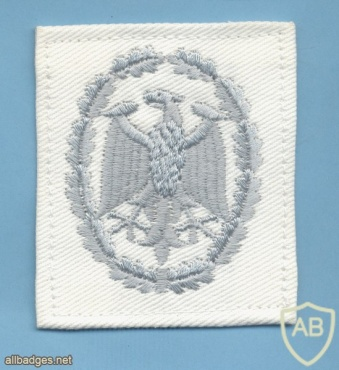 GERMANY Navy - Military Proficiency Badge - Class II (silver), white cloth img43327