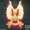 Denmark Zealand Air Defence Regiment cap badge