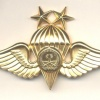 SAUDI ARABIA Army Parachute qualification wings, Class II, Gold, 1979-1980